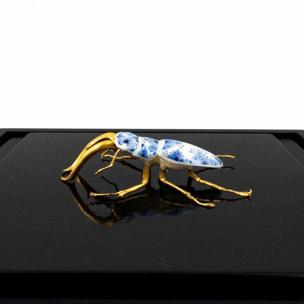Samuel Dejong Anatomia Box Series - Butterfly on Black