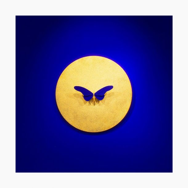 Samuel Dejong Anatomia Inversion Gold on Blue Series - Butterfly