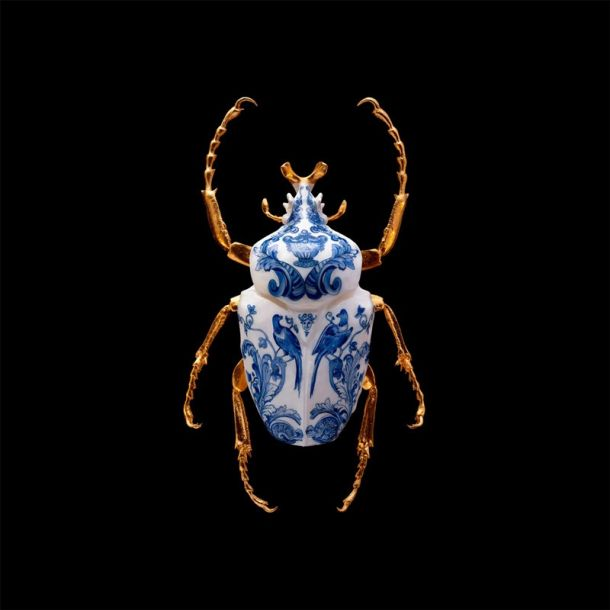 Samuel Dejong Anatomia Blue Heritage Delft Blue Prints Series - Goliath Beetle Wings Closed